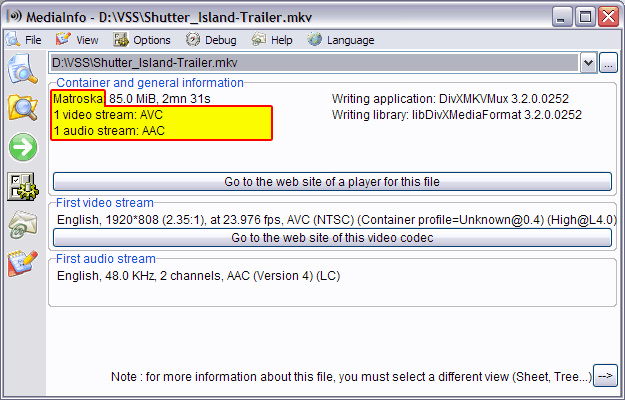 An MKV file in MediaInfo